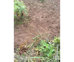 Plot 60x100, Wobulenzi next to Kampala University Luweero campus