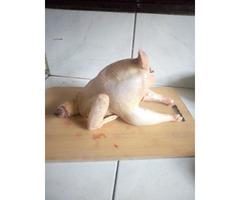 Pure Local chicken (enkoko enganda)