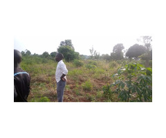 Two acre's on sell in kasanje off Entebbe road