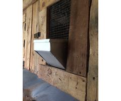 Metallic Rabbit feeders