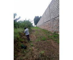 Half acre on sell in bwebajja Entebbe road