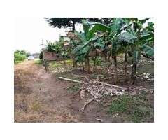 6Acres for sale mukono-nkokonjeru