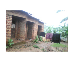 Rentals on sell in ndejje lumbugumu off Entebbe road.