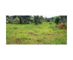 land for sale now at a negotiable price 2km from the main road Kasana Luwero. This land is suitable