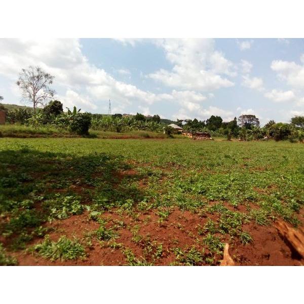 Space for rent in bwebajja Entebbe road - 1/1