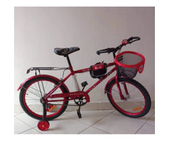 Amazing Bicycles for sale