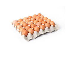 A Tray Of High Quality Eggs Rich In Proteins