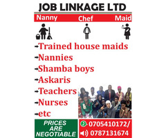 Job linkage Ltd