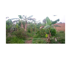 Aplot on sell in bwebajja Entebbe road