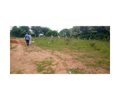 Titled plot on sell in Kawuku wamala Entebbe road